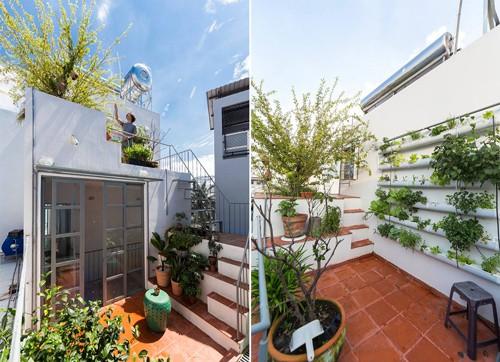 Tầng 3 là phòng dành cho các khách thuê. Trên cùng là sân thượng với vườn cây xanh mát mẻ được chủ nhà chăm chút rất kỹ.