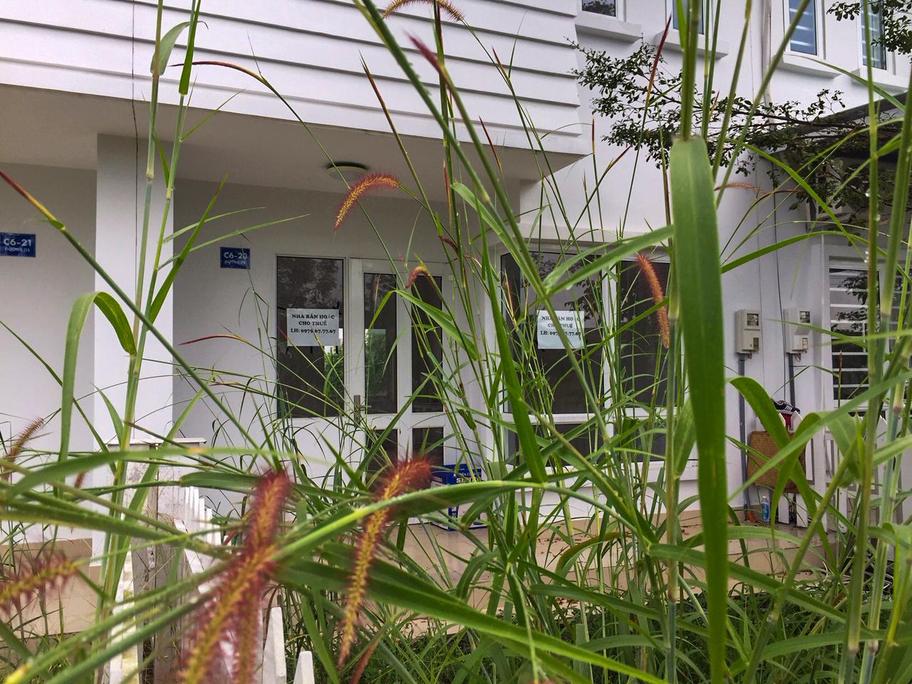Bên trong khuôn viên các căn hộ có giá từ 1,3 - 1,5 tỷ đồng cỏ mọc um tùm. Ảnh: V.D