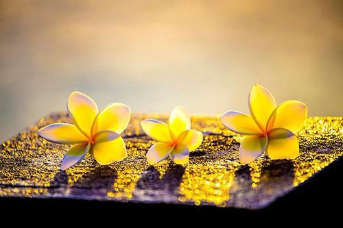 9 điều cần 'buông' để cuộc sống hạnh phúc, an nhiên - Ảnh 1