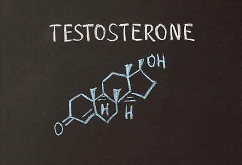 Hormon giới tính trong thịt và sữa - Ảnh 1