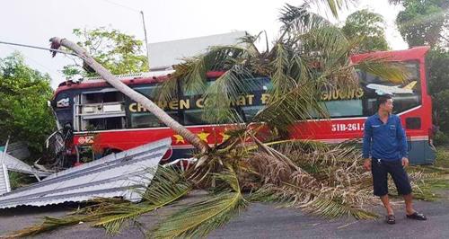 Ôtô giường nằm tông gãy 2 cây dừa, hàng chục hành khách kêu cứu - Ảnh 1