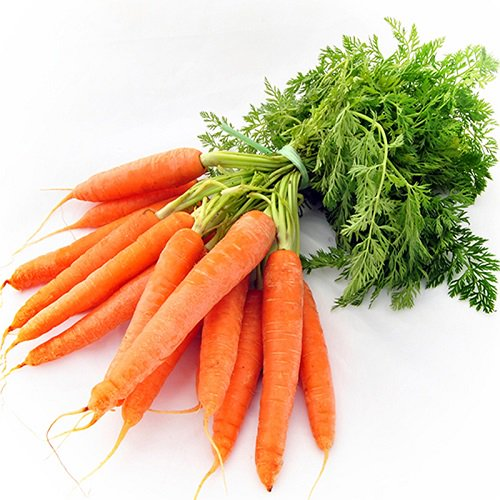 Khi nào nên bắt đầu cho trẻ ăn dặm bằng cà rốt - Ảnh 3