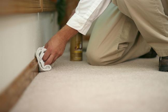 Cảnh báo 5 ổ vi khuẩn gia chủ thường bỏ quên khi vệ sinh nhà - Ảnh 2