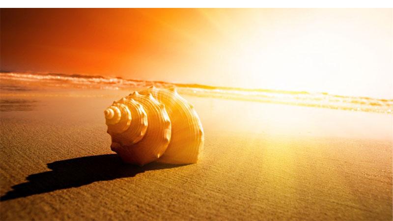 5 nghịch lý đáng để suy ngẫm trong đời - Ảnh 1
