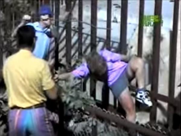 Thót tim cảnh nữ du khách bị gấu Bắc Cực tấn công trong sở thú - Ảnh 1