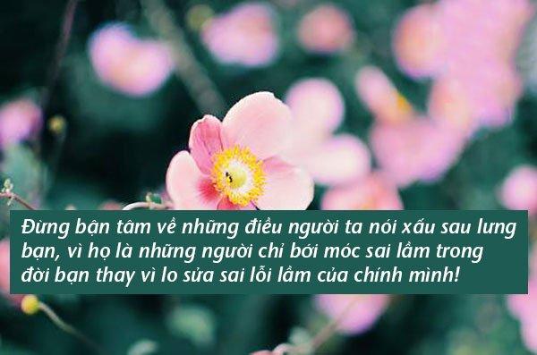 Đừng giận khi có kẻ nói xấu bạn, vì vị trí của họ mãi mãi chỉ ở sau lưng bạn mà thôi - Ảnh 1