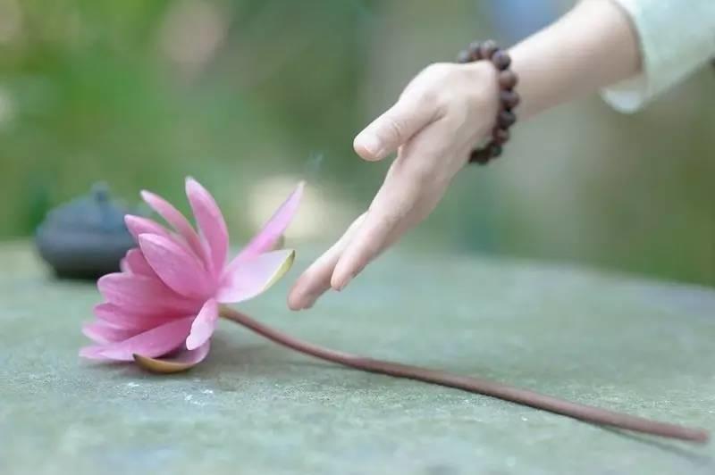 Muốn an nhiên hạnh phúc hãy biết vứt bỏ 4 thứ trên đời, không làm được bạn sẽ chỉ rước thêm tai họa - Ảnh 3