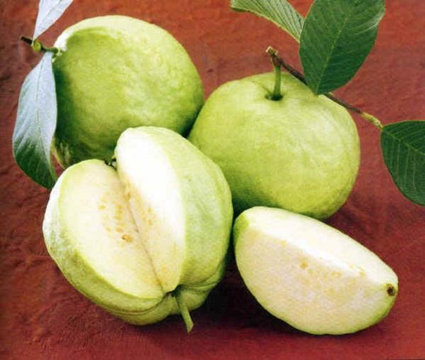 6 loại trái cây có tính nóng, càng ăn càng nổi mụn - Ảnh 2
