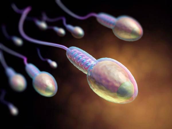 Bắt bài 5 thói quen làm giảm chất lượng tinh trùng các anh chồng hay mắc phải - Ảnh 1