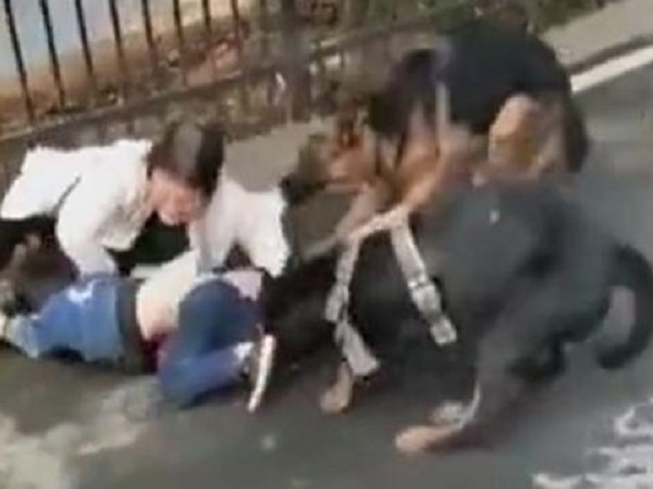 Kinh hoàng clip chó dữ tấn công, kéo lê hai bà cháu giữa đường - Ảnh 1