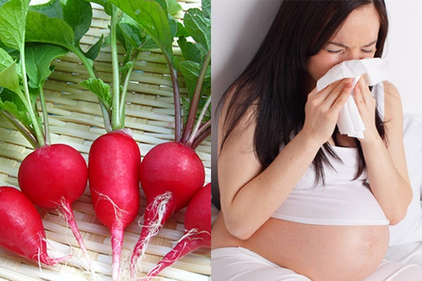 Củ cải đường có tác dụng giải cảm cho mẹ bầu