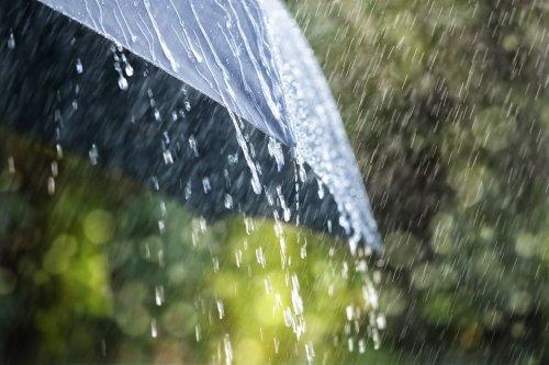 Bài học nên khắc cốt từ chuyện mượn ô của Khổng Tử - Ảnh 1