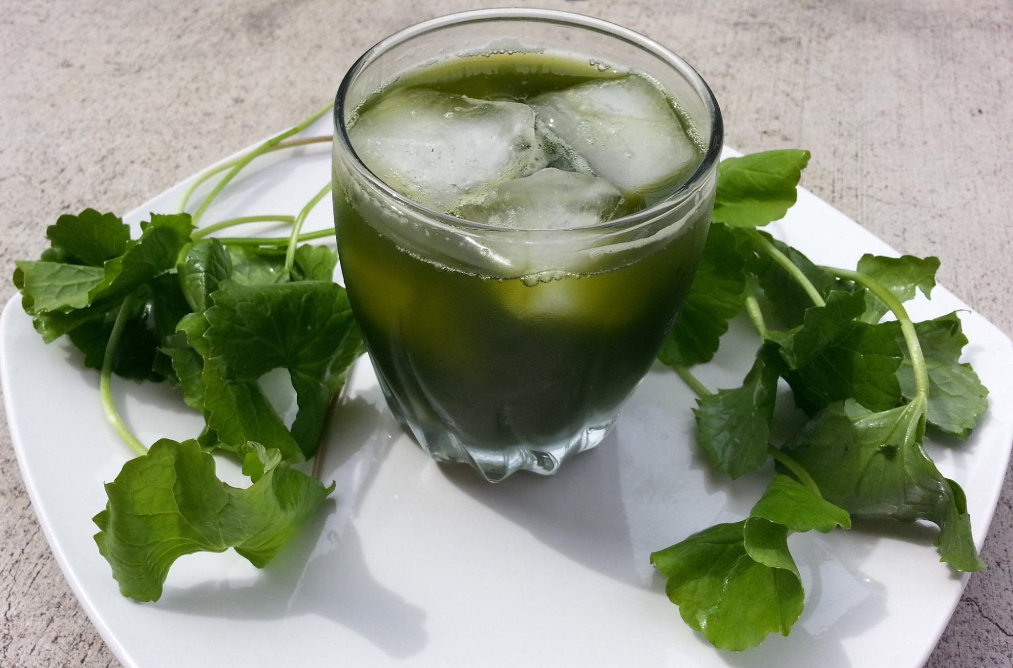 Uống nước rau má đúng cách để tránh trở thành 'thuốc độc' cho cơ thể - Ảnh 1