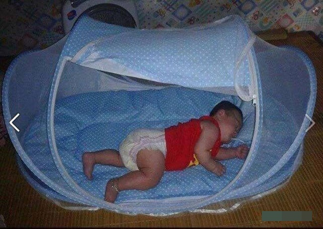 Cho trẻ ngủ trong mùng để ngăn ngừa bệnh sốt xuất huyết