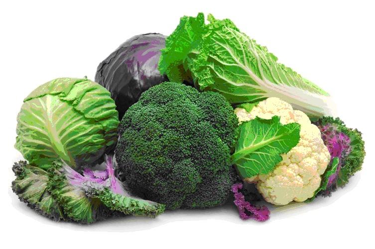Rau xanh là thực phẩm không thể thiếu cho trẻ ăn dặm