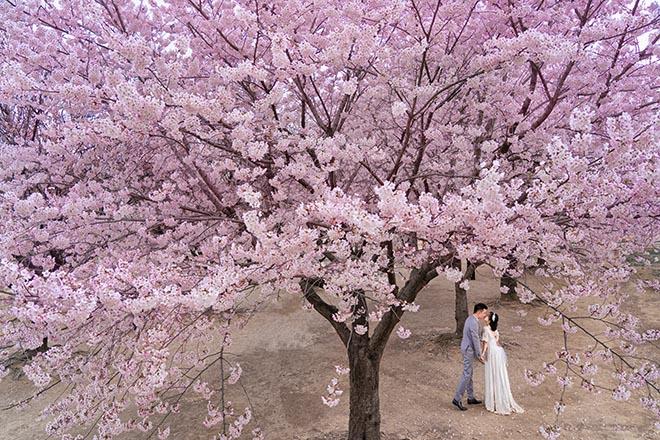 Ốc Thanh Vân lộ hình xăm lớn trong bộ ảnh kỷ niệm 11 năm cưới - Ảnh 8
