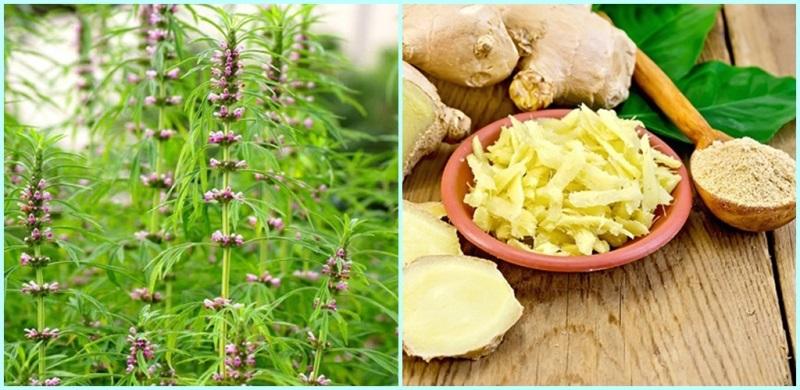 9 phương pháp tự nhiên giúp giảm đau bụng kinh cho bạn nữ - Ảnh 3