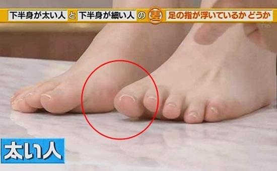 """Khoa học chứng minh: Chỉ cần đi đứng đúng cách bắp chân to như """"cột đình"""" cũng thu nhỏ ngay tức khắc - Ảnh 3"""