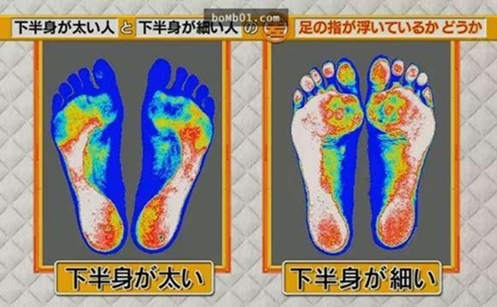 """Khoa học chứng minh: Chỉ cần đi đứng đúng cách bắp chân to như """"cột đình"""" cũng thu nhỏ ngay tức khắc - Ảnh 4"""