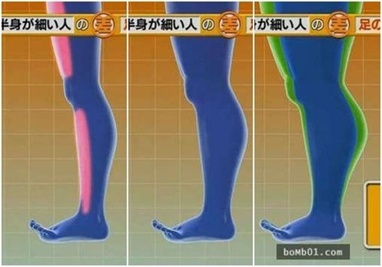 """Khoa học chứng minh: Chỉ cần đi đứng đúng cách bắp chân to như """"cột đình"""" cũng thu nhỏ ngay tức khắc - Ảnh 5"""