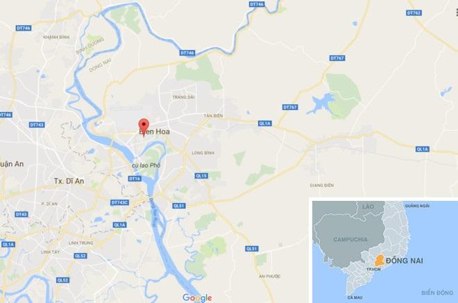 Chặn xe tải chở nội tạng động vật thối tuồn xuống sông Đồng Nai - Ảnh 2
