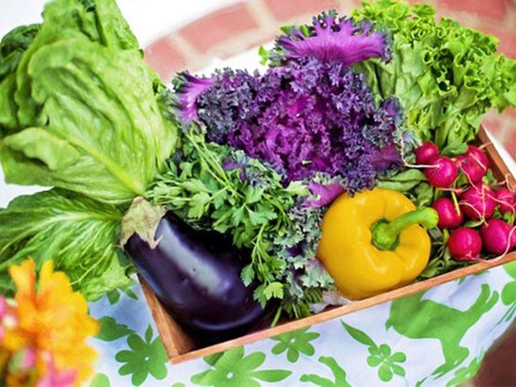 9 lợi ích mà bạn cần biết về thực phẩm hữu cơ - Ảnh 1