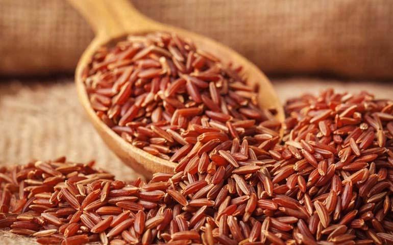 tGạo lứt huyết rồng là gạo có vỏ bên ngoài màu đỏ, bên trong hạt gạo khi bổ đôi ra cũng là màu đỏ
