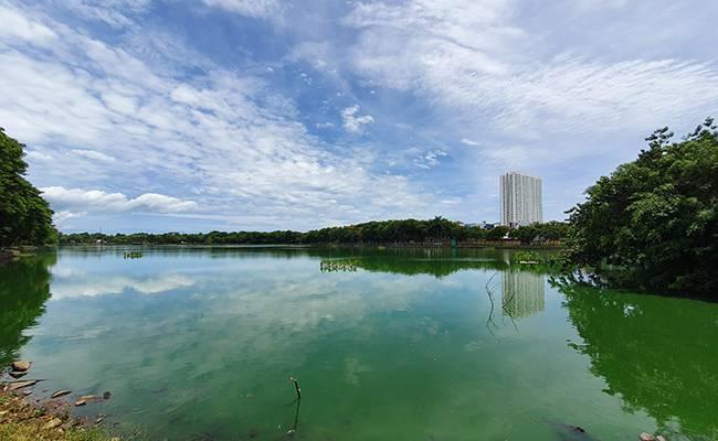 Đà Nẵng: Thu hồi nhiều ngàn mét vuông đất công viên bị xẻ bán trái phép - Ảnh 1