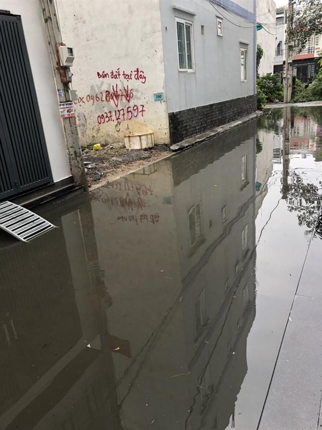 Dân khốn khổ vì rạch Cầu Dừa bị dự án Thăng Long Home xóa sổ - Ảnh 2