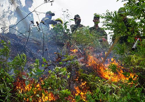 Hơn 100 người chữa đám cháy rừng ở Đà Nẵng - Ảnh 2