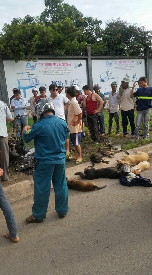 Hai thanh niên trộm chó bị người dân vây đánh bất tỉnh, đốt cháy cả xe - Ảnh 1
