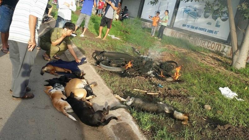 Hai thanh niên trộm chó bị người dân vây đánh bất tỉnh, đốt cháy cả xe - Ảnh 6