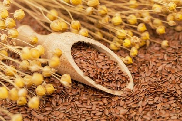 Công dụng làm đẹp và chữa bệnh tuyệt vời của hạt lanh - Ảnh 1