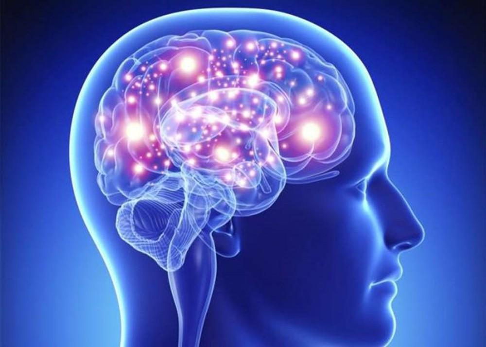 uống quá nhiều rượu khiến các tế bào não bộ bị thoái hóa, suy giảm khả năng nhận thức