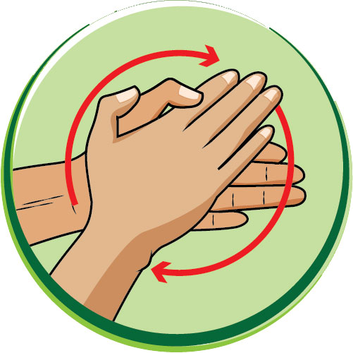 6 bước rửa tay bằng xà phòng giúp ngăn ngừa virus cúm cho trẻ - Ảnh 2