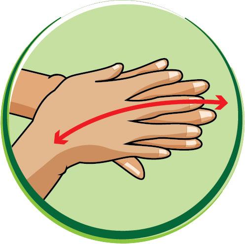 6 bước rửa tay bằng xà phòng giúp ngăn ngừa virus cúm cho trẻ - Ảnh 3