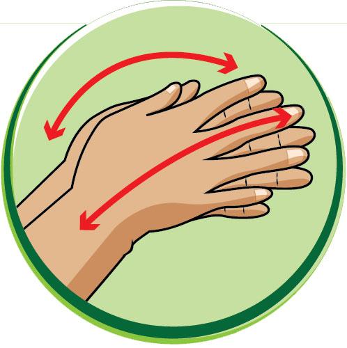6 bước rửa tay bằng xà phòng giúp ngăn ngừa virus cúm cho trẻ - Ảnh 4