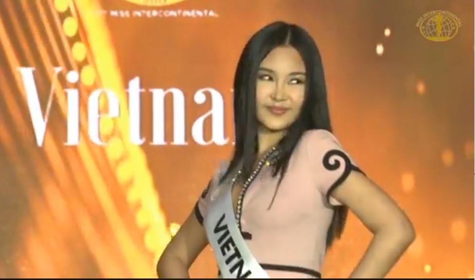 Hết chê lẳng lơ, cư dân mạng Việt Nam vào page Hoa hậu Liên lục địa tố Lê Âu Ngân Anh 'thi chui'  - Ảnh 1