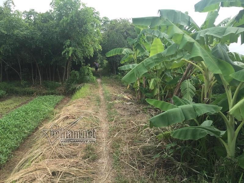 Sa lầy ở dự án 'ma', khách hàng trầy trật đòi hàng trăm tỷ mua đất - Ảnh 2
