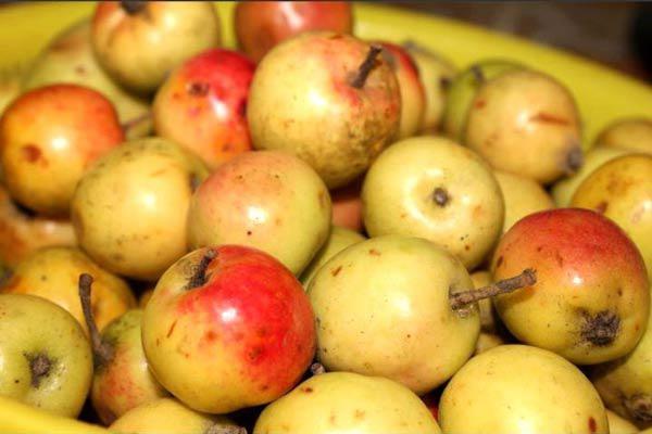 2 cách làm giấm táo đơn giản tại nhà mà vẫn vô cùng đảm bảo - Ảnh 1