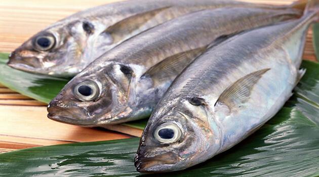 Biết cách chọn cá tươi ngon, chị em nắm được trong tay 50% thành công khi nấu nướng - Ảnh 1