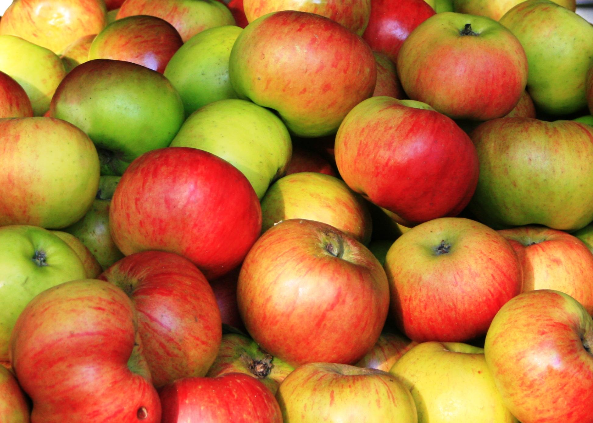 6 loại trái cây giúp loại bỏ chứng táo bón nhanh nhất - Ảnh 2