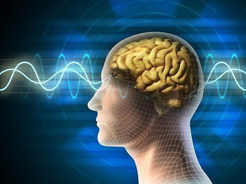 Kiểm tra độ nhạy cảm cơ thể dựa vào não bộ - Ảnh 3