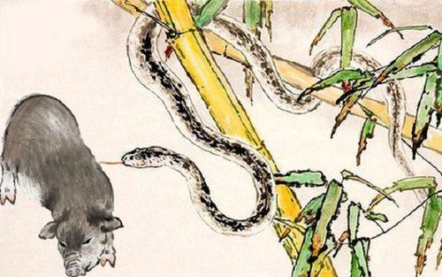 6 cặp con giáp có duyên nhưng không có phận, càng yêu lâu càng đau khổ - Ảnh 4