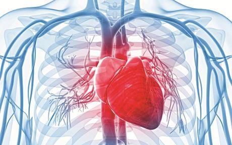 Những người dễ mắc bệnh tim mạch và cách phòng ngừa bằng thực phẩm - Ảnh 1