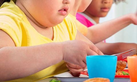 Hậu quả do béo phì ở trẻ em - Ảnh 1
