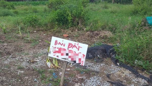 Cà Mau: Đất nhà đang ở bỗng dưng bị rao bán - Ảnh 1
