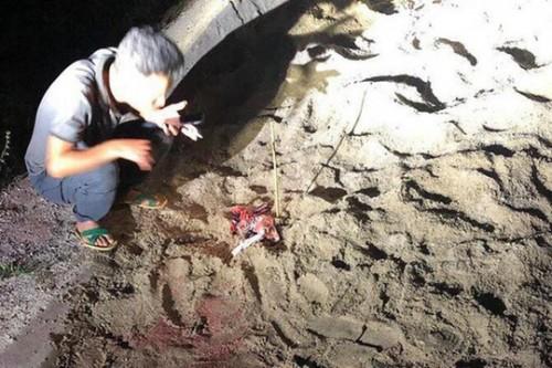 Vụ bé trai 7 tuổi bị chó cắn tử vong ở Hưng Yên: 'Tôi hét khản cả tiếng nhưng đàn chó không hề bỏ chạy' - Ảnh 2