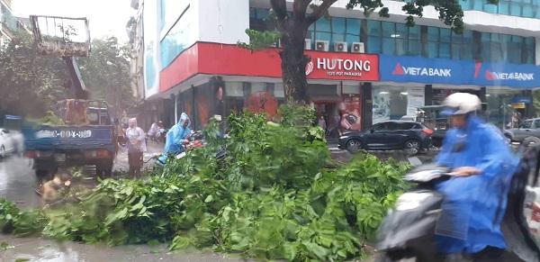 Cập  nhật tin bão số 2: Mưa lớn khắp nơi, đã có 2 người chết  - Ảnh 2