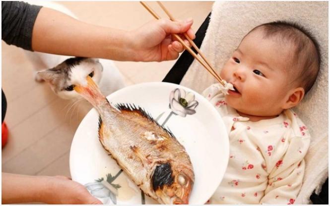 Cho trẻ ăn hải sản cần lưu ý gì để tránh bị dị ứng, ngộ độc? - Ảnh 1